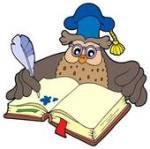 The Wriiting Owl Main Logo